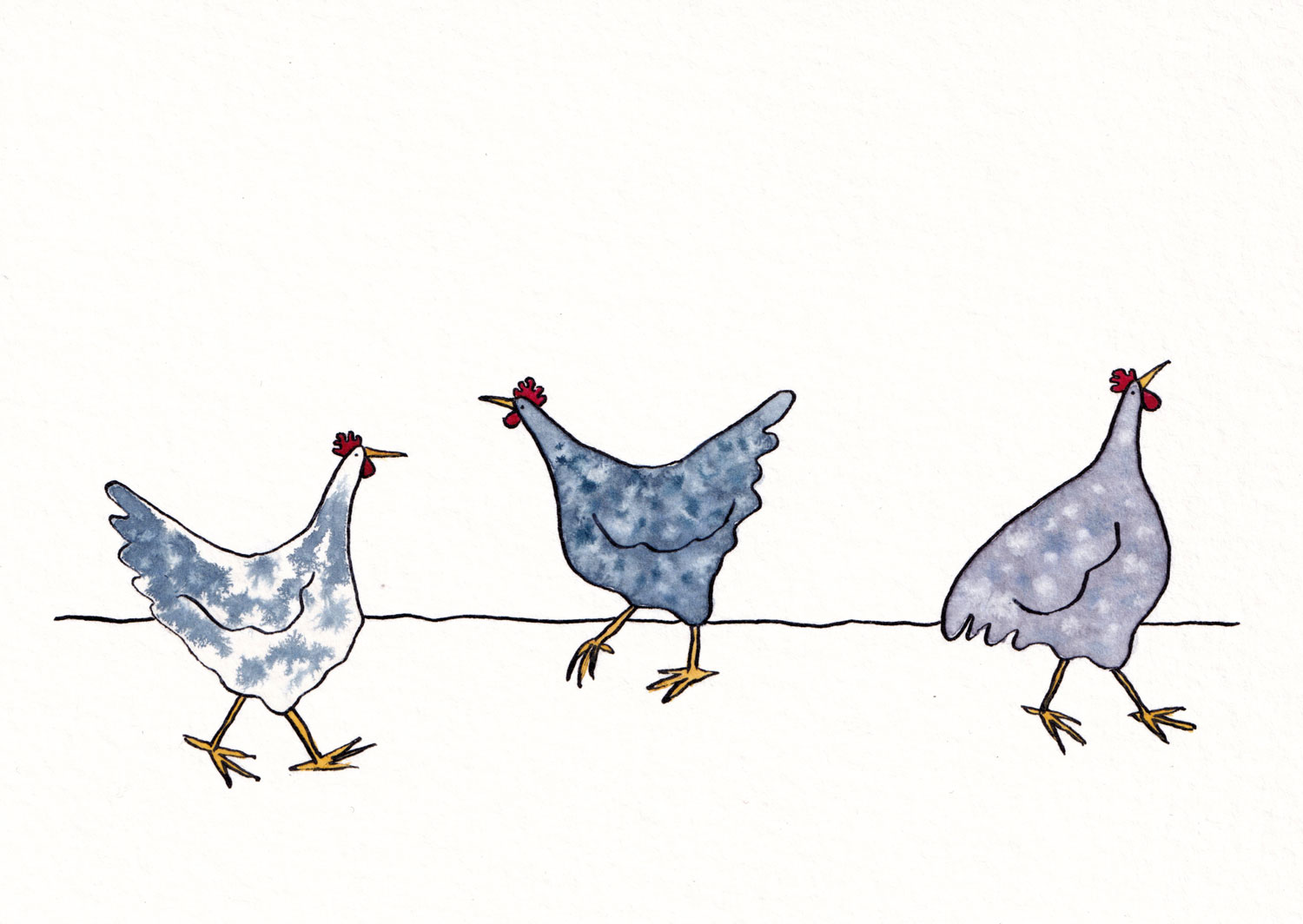 illustration of three hens in watercolour