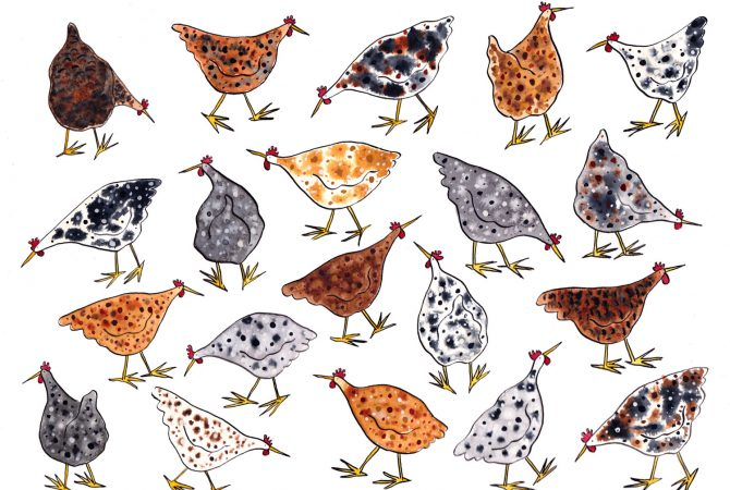 Painting of lots of hens in different colours filling the whole page