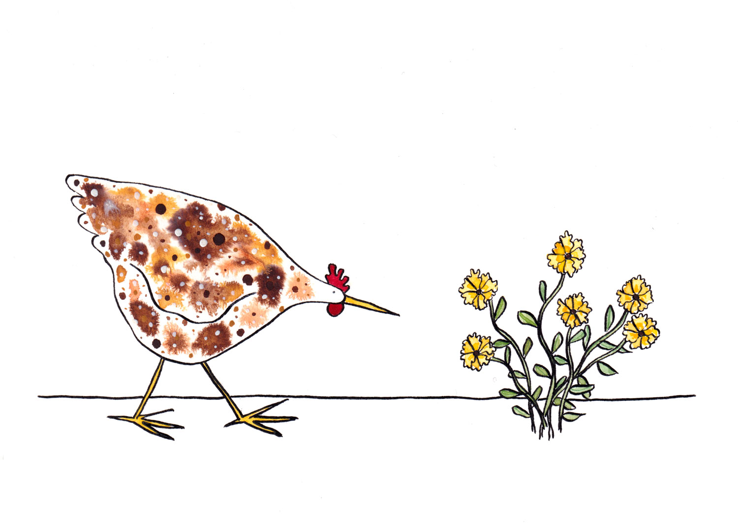 Watercolour painting of a hen looking at a clump of yellow flowers