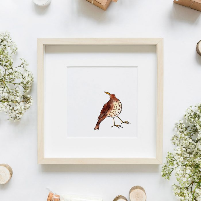 Flatlay of a bird drawing in a wooden frame and white flowers