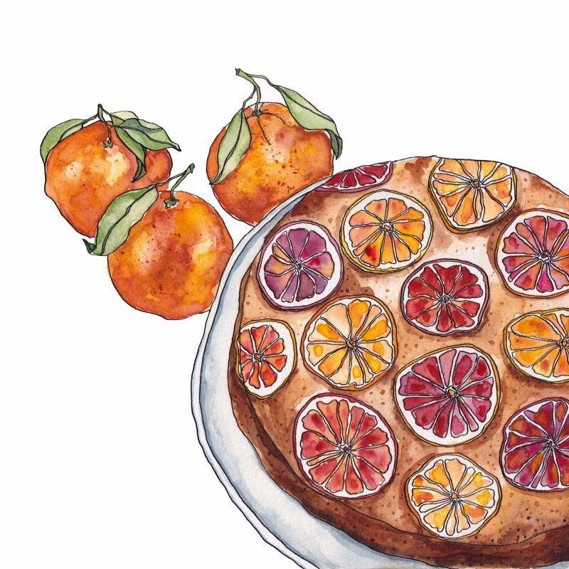 Watercolour painting of an upside-down blood orange cake on a plate, with three oranges beside.