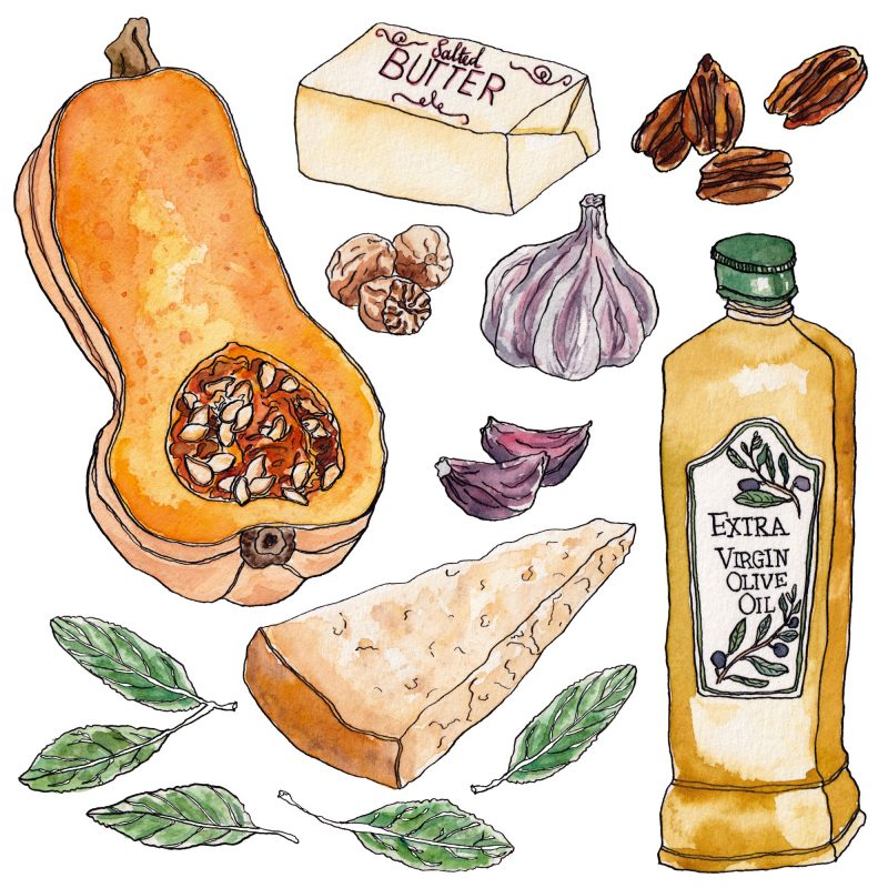 Drawing of ingredients to make Brown Butter Ravioli with Butternut Squash